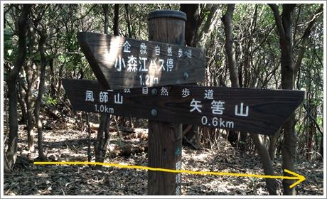yahazuyama007.jpg