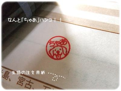 2014_03120005.jpg