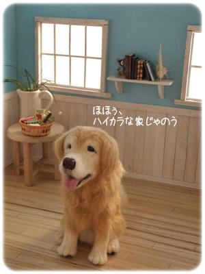 2014_04050011.jpg
