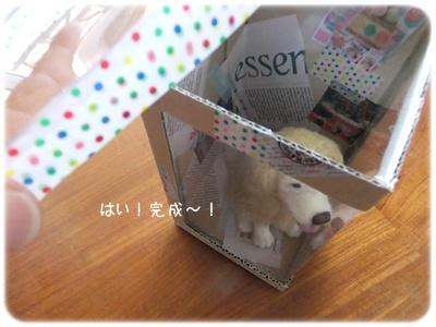 2014_05110020.jpg