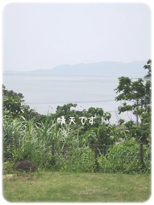 2014_06040004.jpg