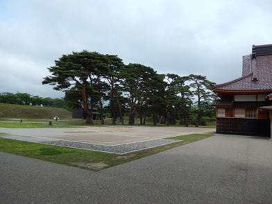 20140719_015.jpg