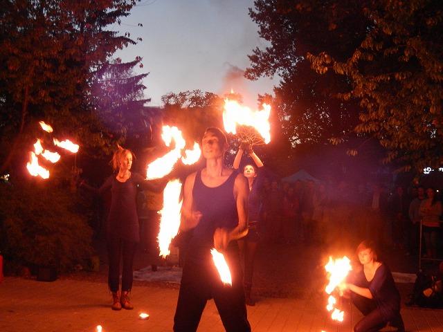 Fire show3