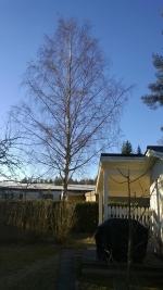 霜のおりた家