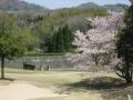 2014.4.14兵庫7