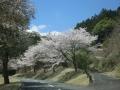 2014.4.14静岡2