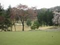 2014.4.16東京・神奈川4