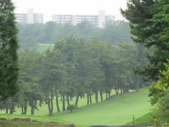 2014.6.26神奈川1