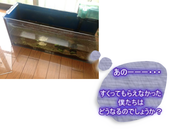 201406104.png