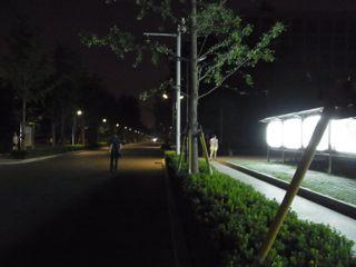 8:3夜の農科院