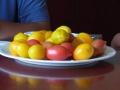 昼ご飯トマト1