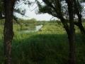 五大連池7湿原