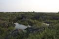 五大連池15火山岩1