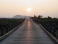 五大連池19夕陽の道