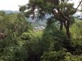 山から望む耕三寺