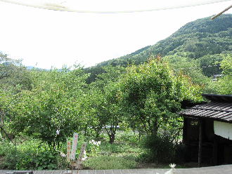 2014081202.png