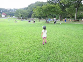 2014082433.png