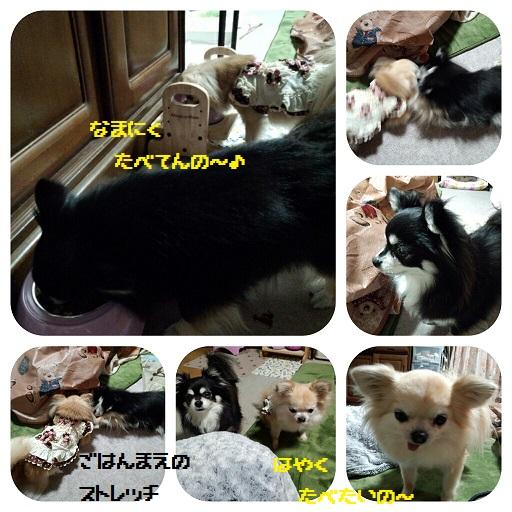 CYMERA_20140227_185524.jpg