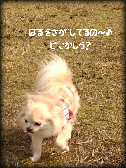 CYMERA_20140309_144256.jpg