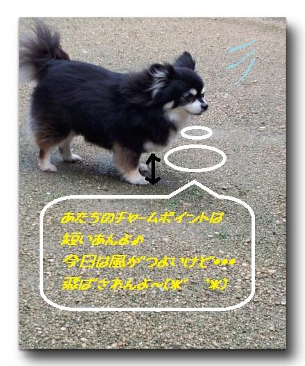CYMERA_20140809_204745.jpg