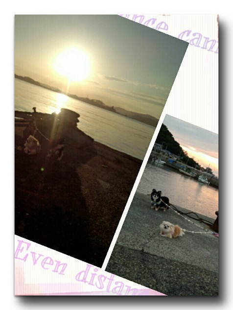 CYMERA_20140812_092532.jpg