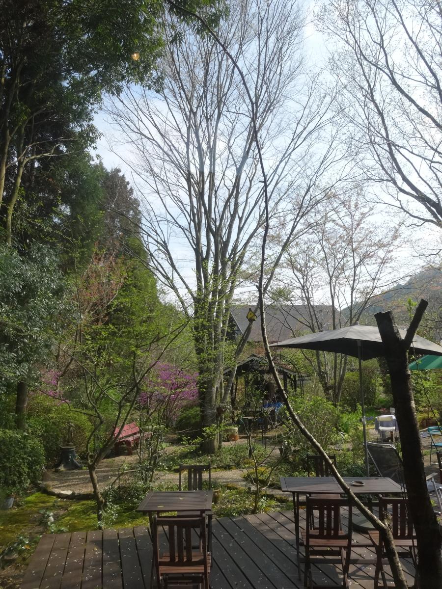 カフェよりの庭景色