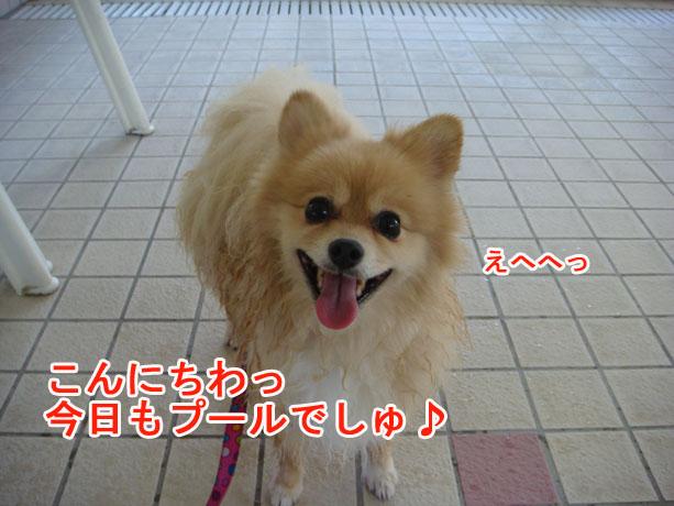 2014_09_13-01.jpg