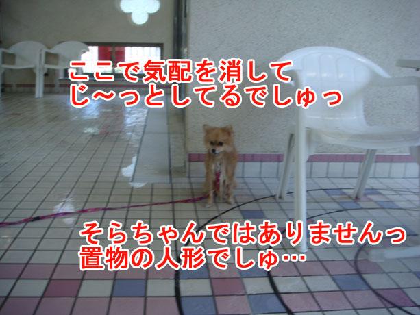 2014.09.13_09