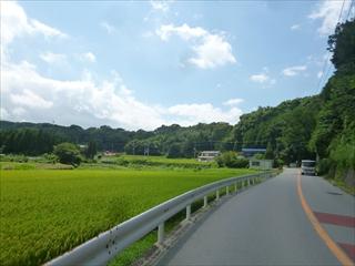 yabitsu031.jpg