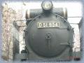 SL D51_954