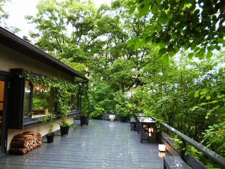 秋篠の森17