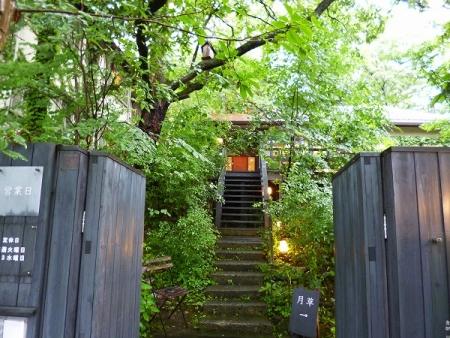 秋篠の森4