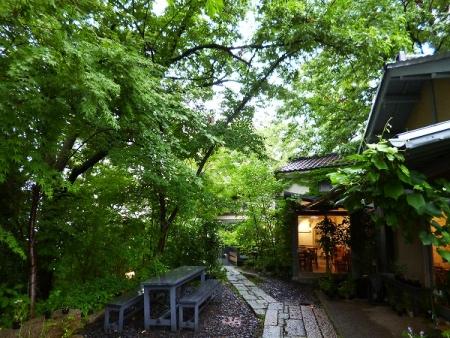 秋篠の森A