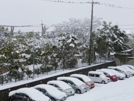 s-snow1.jpg