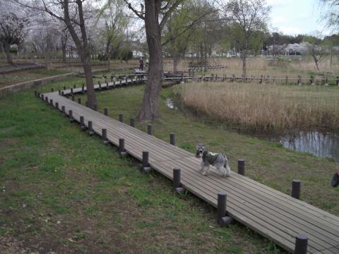 北柏ふるさと公園