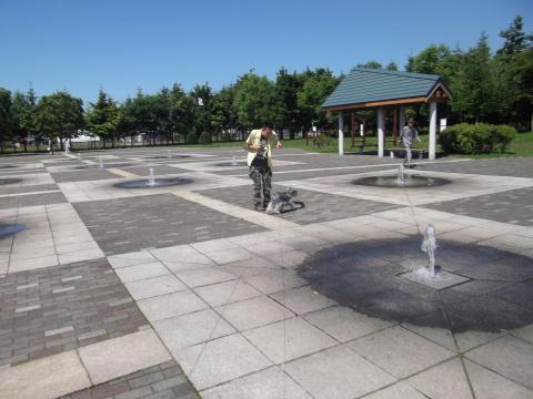 函館 昭和公園