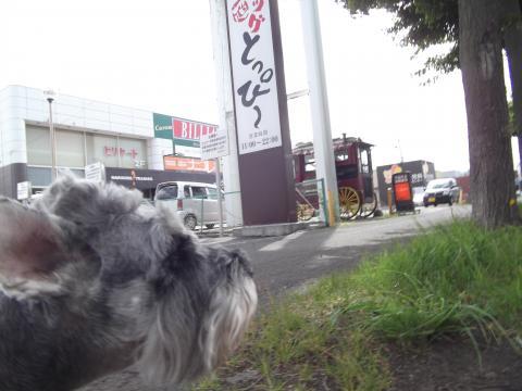 キャノン札幌