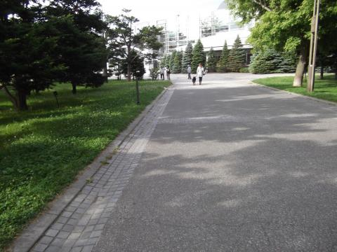 中島公園シェパード