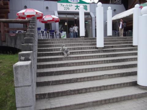 道の駅フォーレスト大滝