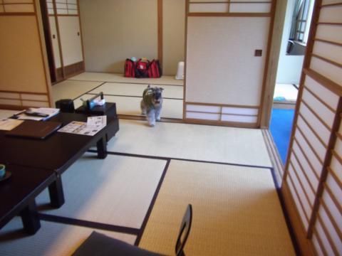 望川閣の部屋