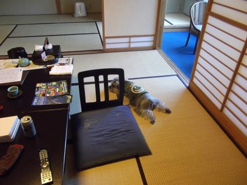 望川閣の部屋にてウィル
