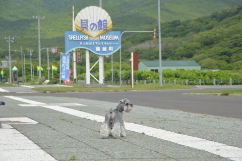 シェルプラザ港