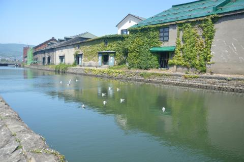 小樽運河にてウィル