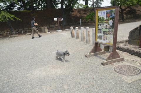 鶴ヶ城駐車場