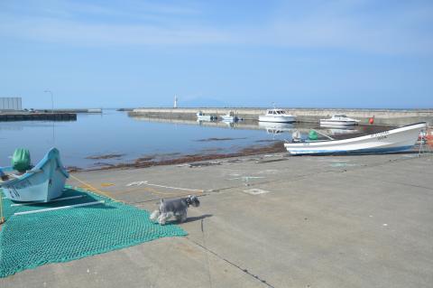 恵山泊漁港