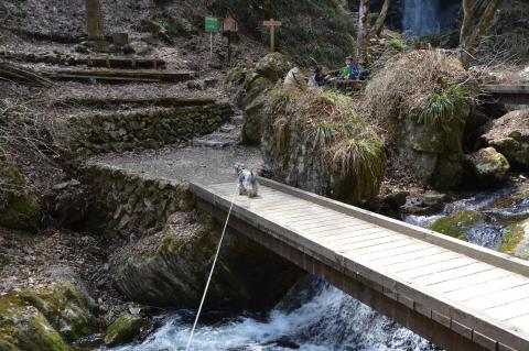 払沢の滝 ウィル
