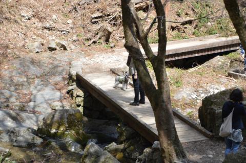 払沢の滝でウィル