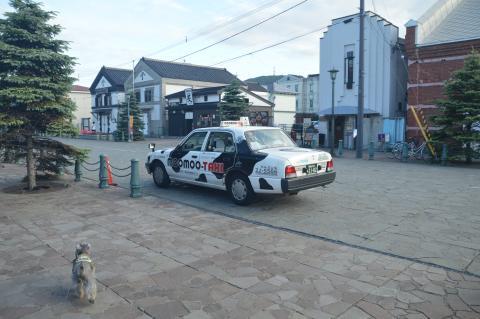 牛風味なタクシー