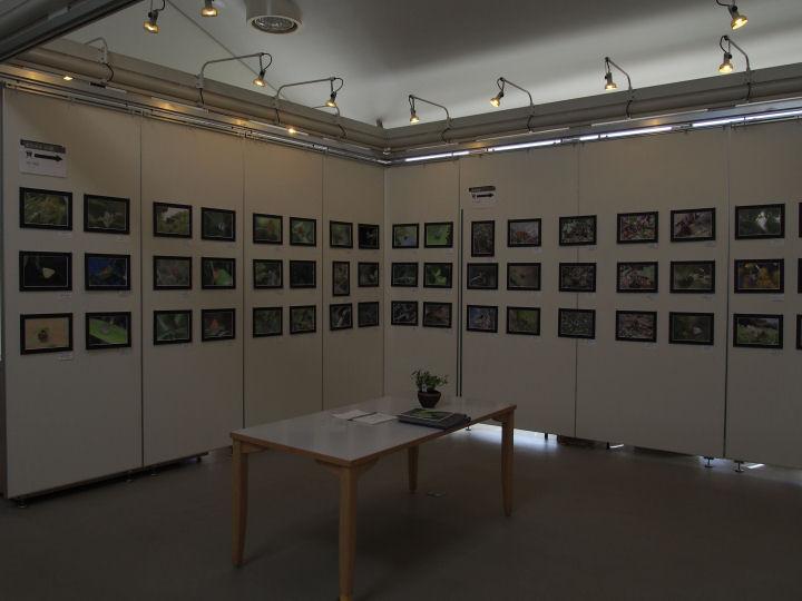 写真展2014-P3210003