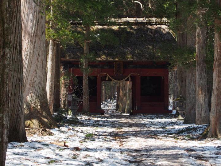 戸隠神社-OMD52157